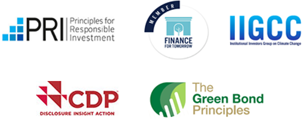Principles for Responsible Investment,Finance for Tomorrow,Investors Group on Climate Change,Carbon Disclosure Project,The Green Bond Principles